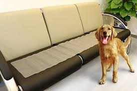 Amazon Pettom Electronic Indoor Pet Training Shock Mat 30 by