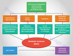 The Metabolic Syndrome Syndrome X Links To Early