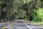 imagem de Pinhal Rio Grande do Sul n-17