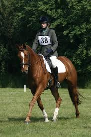 Hazel Heaton | Nine Acres Equestrian