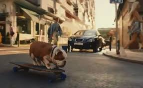 This is not what ive expected. New Churchill Advert Slammed As Nodding Dog Gets A New Look Daily Mail Online
