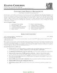 Resume Format Manager Excellent Resume Format For Manager Post Sales Manager Resume 15