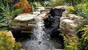 how to build a pond or water garden in your yard