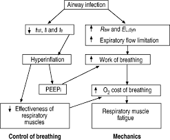 Ards Pathophysiology Flow Chart Respiratory Failure European Respiratory Society