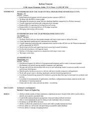 Entrepreneur Resume Entrepreneur Resume Samples Velvet Jobs 3