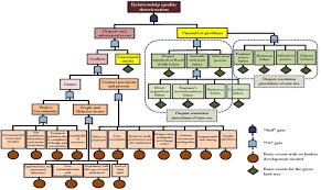suzuki king quad 300 wiring diagram wirdig suzuki ltz 400 wiring diagrams suzuki engine image for user