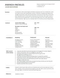 Sales Executive Sample Resume Resume Sample Senior Sales Executive ...