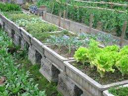 vegetable container gardens vegetable container potted vegetable garden ideas