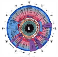 Figure 2 From Classification Of Iris Regions Using Principal