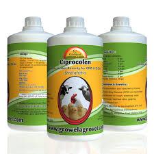 Poultry Crd E Coli Medicine