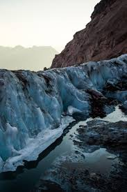 When The Glaciers Disappear Those Species Will Go Extinct