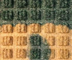 waterhog logo inlay mat