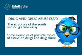 how to write drug and drug abuse essay com drug and drug abuse essay guide
