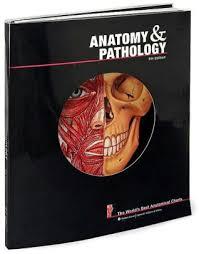 World S Best Anatomical Charts Anatomy And Pathology The Worlds Best Anatomical Charts Edition 5 Other Format