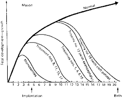 Stillbirth Rates By Week Chart Genetic And Nongenetic Causes Of Pregnancy Loss Glowm
