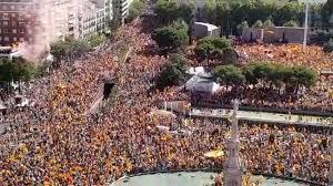 Manifestación en Colón bilaketarekin bat datozen irudiak