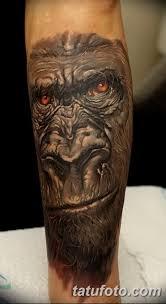 значение тату горилла смысл история фото и эскизы рисунков