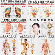 7pcs Set Acupuncture Massage Point Map Chinese English Meridian Acupressure Points Posters Chart Wall Map For Medical Teaching