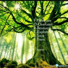 Forest Quotes Gorgeous FForest Are OOverused Quotes Writings By Sweta Kumari