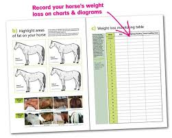 Equine Weight Loss