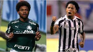 Libertadores: Palmeiras derrota o Santos por 1 a 0 e conquista a  Libertadores 2020