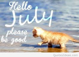 funny hello july saying picture with a cat