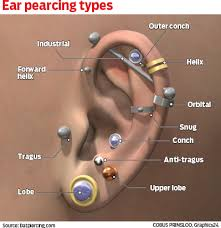 Ear Piercing Chart Ear Piercing Diagram Wiring Schematic Diagram