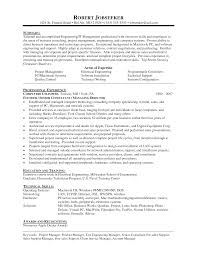 It Consultant Resume Example Senior Sample Format Technical Vozmitut