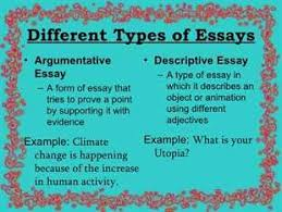 essay types examples com  essay types examples 7