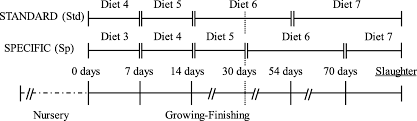 Pig Feeding Chart By Age Pdf Strategies To Improve The Growth And Homogeneity Of Growing