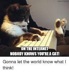 on the internet nobody knows you re a cat. Perfect The Internet Memes And World Caption By Kitrywodce ON THE INTERNET NOBODY  KNOWS YOUTREACAT On The Internet Nobody Knows You Re A Cat 1