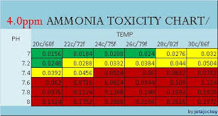 Ammonia Ph Chart Your Guide To Ammonia Toxicity Aquarium Advice Aquarium