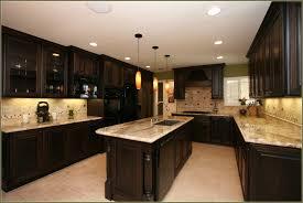 Dark Colored Kitchen Cabinets Contemporary Dark Brown Painted Kitchen Cabinets Home Brown