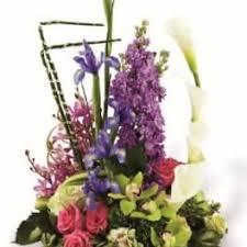 <b>Iris</b> Delivery San Diego | <b>Flowers by</b> Coley