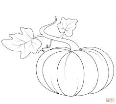 Get This Pumpkin Coloring Pages Kids Printable 73619 !
