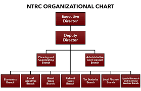 Chart Organization Of Local Government Organizational Chart