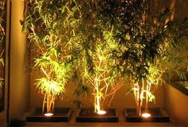 outdoor garden lighting. Garden Lighting Can Enhance Any Outdoor Area, But There Are Few Things To Consider When Planning Your Lighting. This Guide Will Show You How Plan