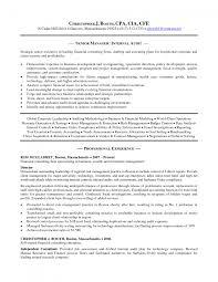 Cover Letter Sample Audit Resume Audit Intern Sample Resume