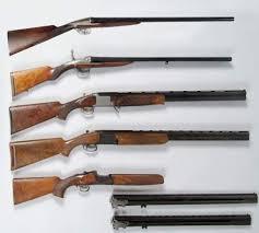 """Résultat de recherche d'images pour """"photo arme de chasse"""""""