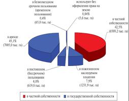 Дипломная работа Право собственности на землю в Российской  Дипломная работа Право собственности на землю в Российской Федерации на современном этапе