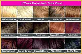 Loreal Hicolor Colour Chart 28 Albums Of Loreal Hicolor For Dark Hair Color Chart