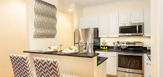 1 Bedroom Apartments In Cambridge Ma Awesome Inspiration Design