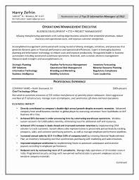 Information Management Officer Sample Resume Cto Resume Example Examples Of Resumes Template Pdfple Doc Cover 20