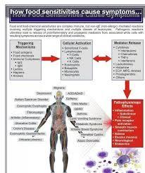 Food Sensitivity Chart Health Wellness Food