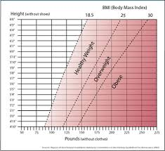 Bmi Weigh The Body Mass Index And Your Health
