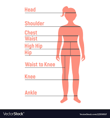 Girl Size Chart Human Front Side Silhouette