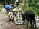 site de rencontre pour motard bergen