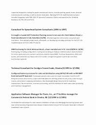 Carpenter Resume Awesome Carpenter Resume Example Cheerful It Professional Resume Examples