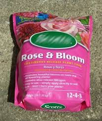 rose fertilizer learn how to choose