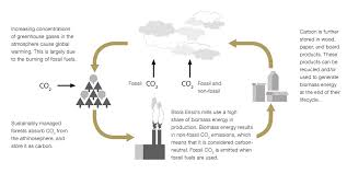 sustainable paper stora enso carbon cycle and carbon footprint